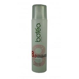 Botea Shampoo